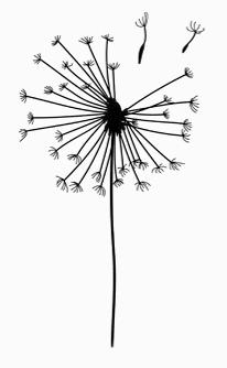 La Florinata